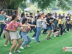 广州可以组织团建活动野炊做饭的地方