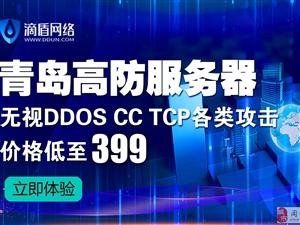 滴盾网络:青岛高防服务器,低价限时抢购