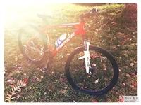 出售85新美利达山地自行车一台