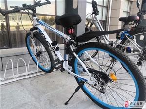 凤凰21速山地自行车