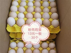 鸡蛋都有现货