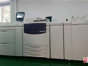打印機維修 復印機維修 電腦維修