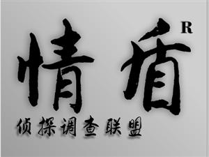 南阳专业找人公司