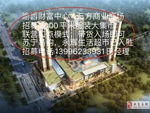 渝西财富广场4万方商场招募3000平米服装大集市
