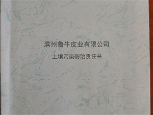 滨州鲁牛皮业有限公司土壤污染防治责任书(一)