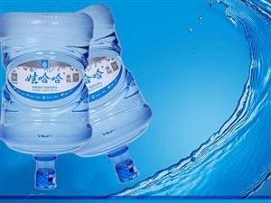 郑州航空港区机场娃哈哈桶装水专营配送中心