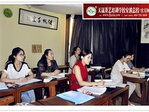 学茶艺,找天晟——安溪人自己的茶艺培训学校