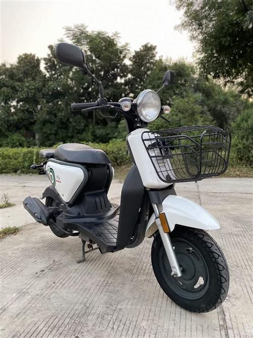 出售正品铃鹿49cc