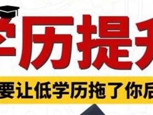 重庆大专本科学历成人教育远程教育报名中