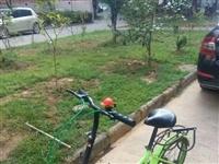 20寸折叠自行车 可放后配箱 学骑标配