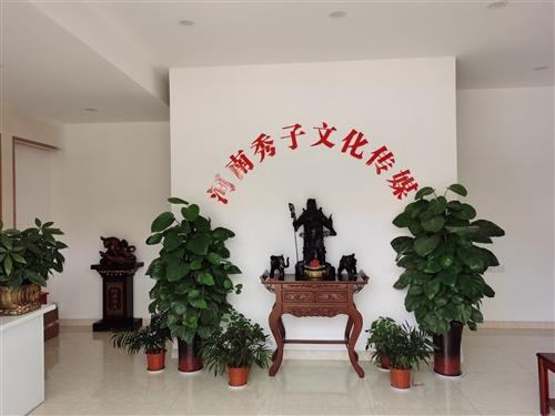 河南秀子文化传媒有限公司