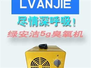小型臭氧机厂家供应_绿安洁小型空气消毒机