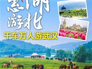 惠游湖北 与爱同行!政府补贴,武汉两日游!