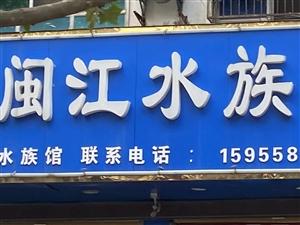 闽江水族馆