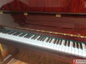 特价转让精品钢琴一架