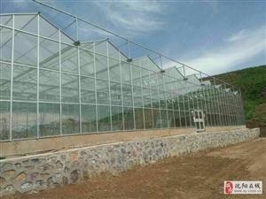 沈阳玻璃智能温室大棚 日光温室大棚建造公司