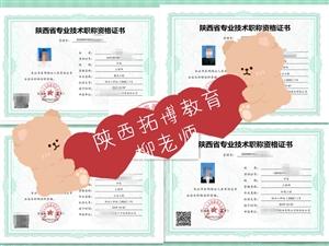 例如2021年陕西省工程师申报评审