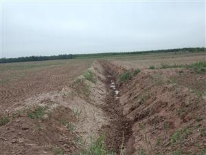 沾化区冯家镇曹家沟村的耕地不知啥情况挖沟,但是有沟无土,土去向不明。