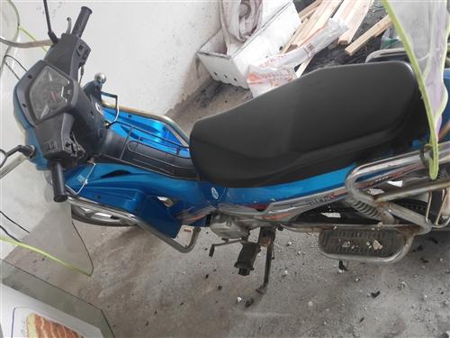 本人有一個摩托車賣  本來打算買菜用的  主要是不會開  所以賣了