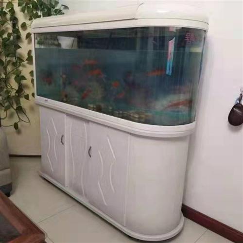 鱼缸转让,长1.28米宽0.4米,价格500元或面议。