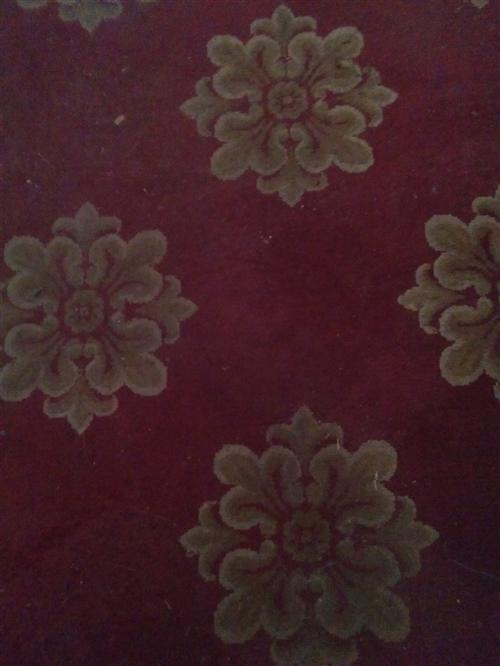 過一陣子要搬新家了,現把地下室存放的大紅牡丹花圖案的地毯(78成新)底價出售,還有原先用過一個冬天的...