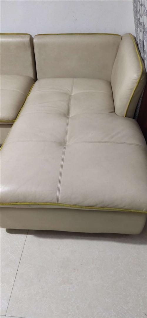 含泪出售真皮沙发,原价5880,现价1500,有发票,地址阜城县丽景中苑,非诚勿扰!