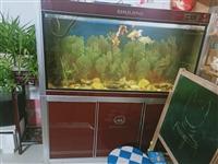品牌闽江下过滤鱼缸,尺寸:1.5米长*0.6米宽*1.5米高,现低价处理!