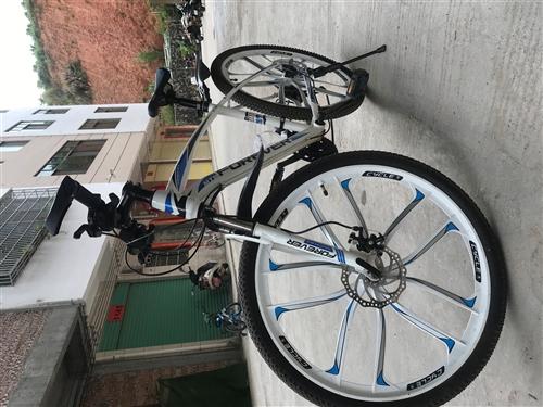 永久牌自行车,新买的九成半新,网上买的包密码锁买了八百多,因女儿不喜欢现底价转让