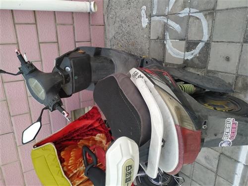 电动踏板电池去新年换,因买车闲置在家1000出售,手续齐全买到就是赚到。17309478602微信r...