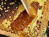 ??自家养的中华土蜂蜜,花源是采自百花丛及附近的橘红树林,集百花之精华。微??【dong22226】...