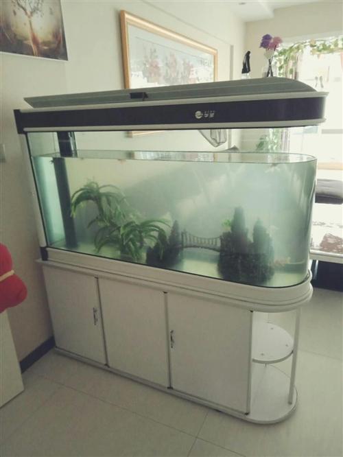 大型鱼缸 品牌:华宝 缸体尺寸:140cm*40cm*70cm 新旧程度:九成新 配件:水循...