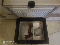 小冰柜 45L  尺寸45 55 45 使用一年 结冰能力强