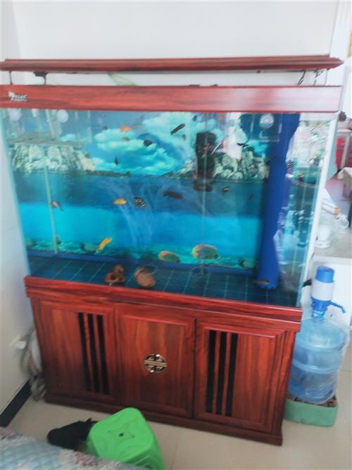 1米2,下過濾高配置魚缸,用了一個多月,有要的聯系
