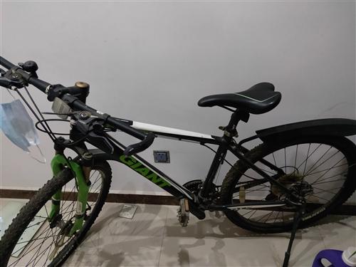 儿子的捷安特自行车闲置了,高中骑了一年多,售价700元,非诚勿扰