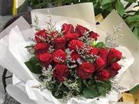 520搶購玫瑰花