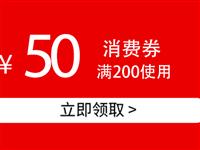 消费优惠券50元