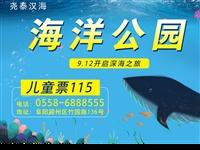 115元抢阜阳海洋公园超值预售儿童票一张!海狮,海豚表演,深海大洋馆,热带雨林等超多项目等你来体验哦