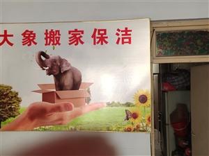 藁城区大象搬家保洁公司