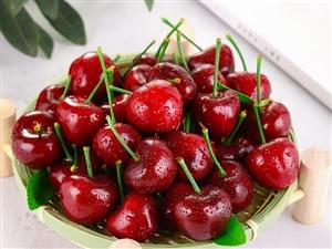 樱桃正当时,舌尖上的美味,尽在大连樱桃