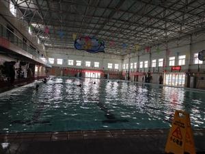 轉讓湯陰普羅圣堡游泳館游泳次卡