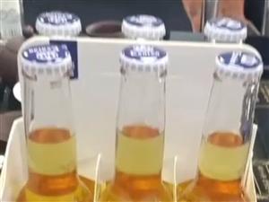 科罗娜啤酒招城市代理