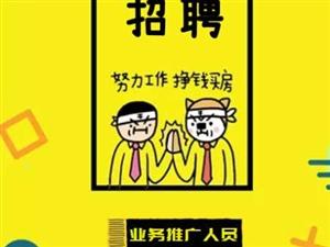 启晟成人教育诚招兼职10名