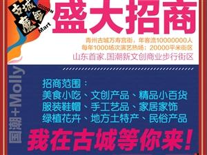 招商了,青州古城文創步行街