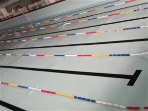 逸高游泳健身俱乐部招募创始会员188名