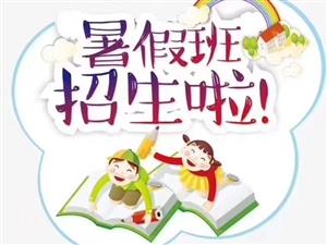 小学生拼音启蒙、作业辅导