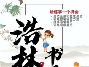 浩林书画艺术中心