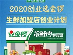 2020创业选金锣