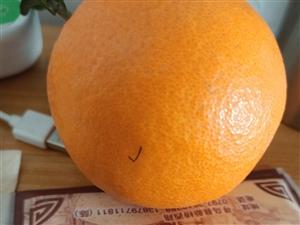 批发吉潭脐橙