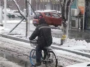 违法共享单车变私有单车