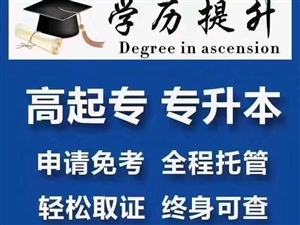 学历提升&证书课程培训